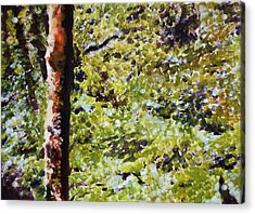 Acrylic Print featuring the painting Bark IIi by Elizabeth Lock