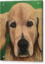 Barkley Acrylic Print