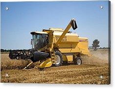 Barley Harvest 2 Acrylic Print by Paul Lilley