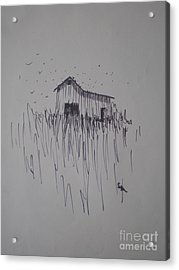 Acrylic Print featuring the drawing Barn And Birds by Suzanne McKay