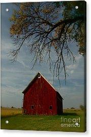 Barn And Box Elder Acrylic Print