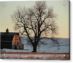 Barn At Sunrise Acrylic Print by Renie Rutten