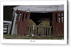 Barn Cats Acrylic Print