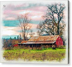 Barn In Penn Valley Painted Acrylic Print