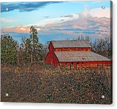 Barn In The Berry Bushes Acrylic Print