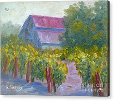 Barn In Vineyard Acrylic Print by Carolyn Jarvis