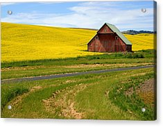 Barn On The Palouse No.2 Acrylic Print by Daniel Woodrum