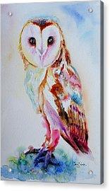 Barn Owl Acrylic Print by Isabel Salvador