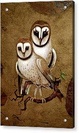 Barn Owls Acrylic Print by Richard Hinger