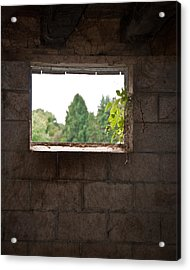 Barn With A View Acrylic Print by Nickaleen Neff