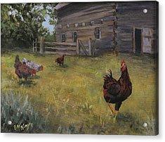 Barn Yard Boss Acrylic Print