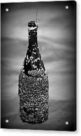 Barnacles And Wine Acrylic Print