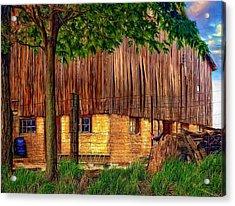 Barnyard - Paint Acrylic Print