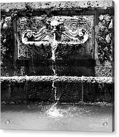 Baroque Coral Fountain At Vizcaya Estate Museum In Miami Florida Square Format Black And White Acrylic Print by Shawn O'Brien