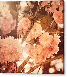 Baroque Spring Acrylic Print