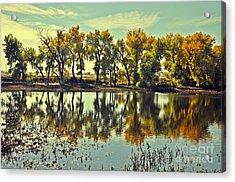 Barr Lake Reflection Acrylic Print by Reza Mahlouji