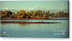 Barr Lake With Longs Peak Acrylic Print by Reza Mahlouji