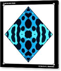 Barracuda Skin Acrylic Print by Roberto Alamino