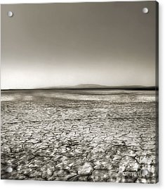 Barstow Dry Lake Bed  Acrylic Print by Gregory Dyer