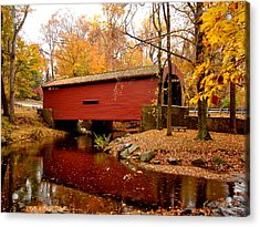 Bartram's Covered Bridge Acrylic Print by L Brown
