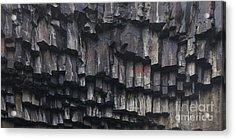 basaltic columns of Svartifoss Iceland Acrylic Print