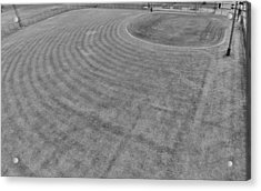 Baseball Field In Black And White Acrylic Print by Dan Sproul