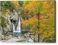 Bash Bish Falls Autumn Acrylic Print by Bill Wakeley