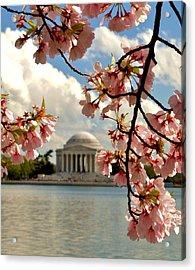 Basin Blossoms Acrylic Print by William Bartholomew