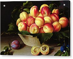 Basket Of Apricots Acrylic Print by Louise Moillon