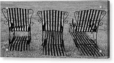 Basking Acrylic Print by Kaleidoscopik Photography