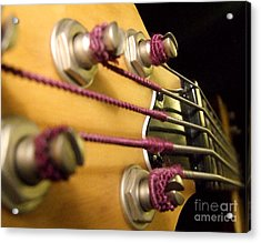 Acrylic Print featuring the photograph Bass II by Andrea Anderegg