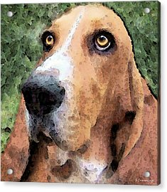 Basset Hound - Irresistible  Acrylic Print by Sharon Cummings