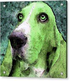 Basset Hound - Pop Art Green Acrylic Print by Sharon Cummings