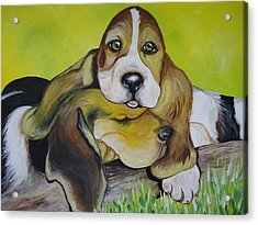 Bassett Hound Pups Acrylic Print