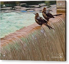 Acrylic Print featuring the photograph Bath Time At The Adolphus by Robert ONeil