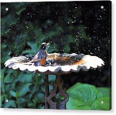 Bath Time Acrylic Print