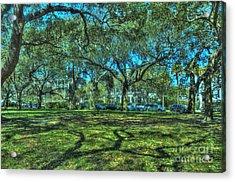 Battery Live Oaks Acrylic Print