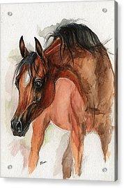 Bay Arabian Foal Watercolor Portrait Acrylic Print by Angel  Tarantella