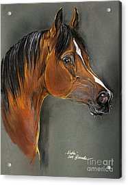 Bay Horse Portrait Acrylic Print by Angel  Tarantella