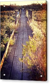 Bay Lands Walk Acrylic Print