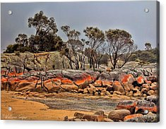 Acrylic Print featuring the photograph Bay Of Fires 2 by Wallaroo Images