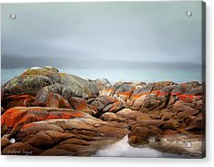 Bay Of Fires 4 Acrylic Print by Wallaroo Images
