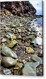 Bay Of Fundy Shoreline Acrylic Print by Thomas R Fletcher