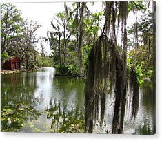 Acrylic Print featuring the photograph Bayou by Beth Vincent