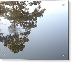 Bayou Bubbles Acrylic Print by John Glass