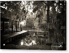 Bayou Evening Acrylic Print by Scott Pellegrin