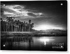 Bayou Sunset-b/w Acrylic Print by Marvin Spates
