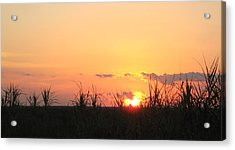 Acrylic Print featuring the photograph Bayou Sunset by John Glass
