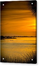 Bayport Dolphins Acrylic Print by Marvin Spates