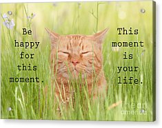 Be Happy For This Moment Acrylic Print by Sari ONeal